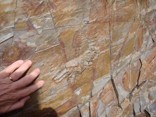 Sole marks and triangles in Ordovician greywackes, Marine Drive, Douglas, IOM