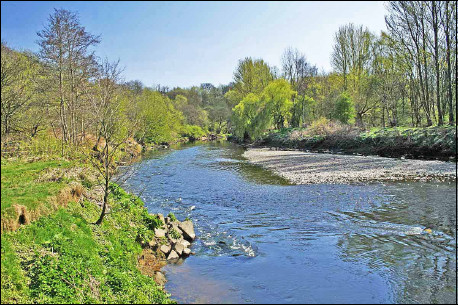 River Irwell and an imbricated pebble bank